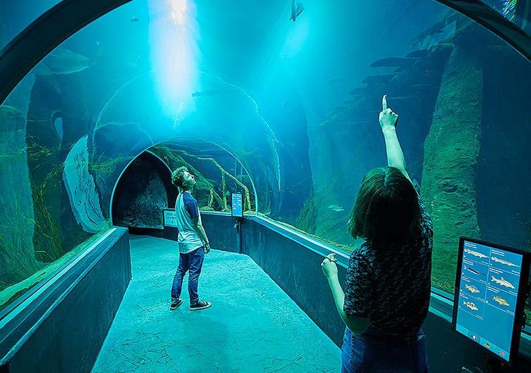AQUATIS Aquarium Vivarium